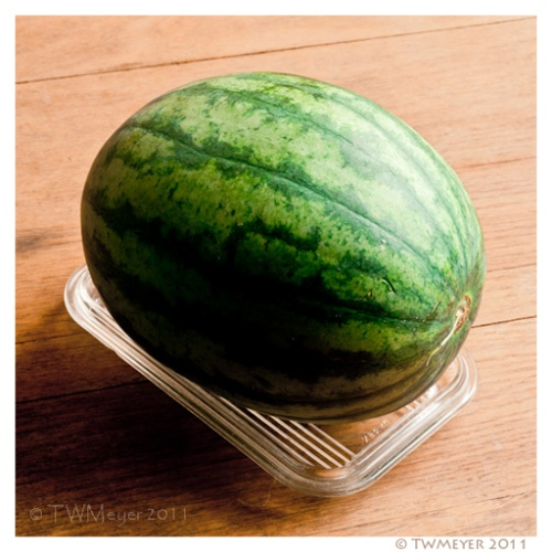 Watermelon on a refrigerator dish lid, 2011 07 07